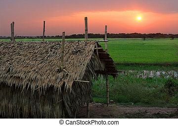 カンボジア人, 日の出