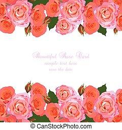 カード, ピンクのバラ, デリケートである