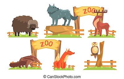 キツネ, 蟻, イラスト, バイソン, 動物, 食べる人, 狼, フクロウ, セット, ベクトル, 鹿