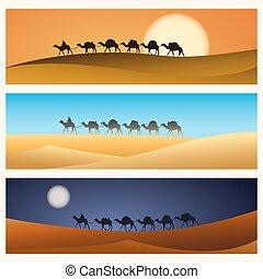 キャラバン, ラクダ, 砂漠