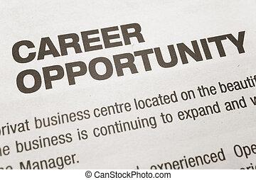 キャリア, 機会
