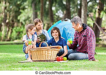 キャンプ場, 楽しむ, ピクニック, 家族