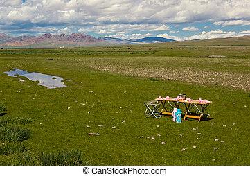 キャンプ場, mongolian, 風景, 典型的