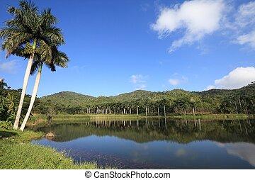 キューバ, 景色の 眺め