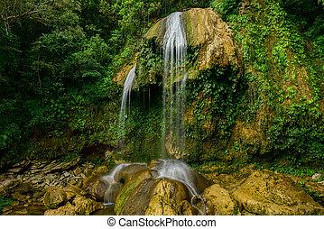 キューバ, -, 滝, del, soroa, pinar, リオ