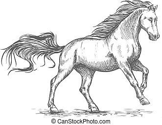 ギャロップする, 肖像画, 動くこと, 馬, 白, スケッチ