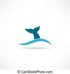 クジラ尾, アイコン