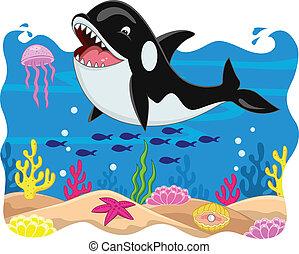 クジラ, カートン, キラー