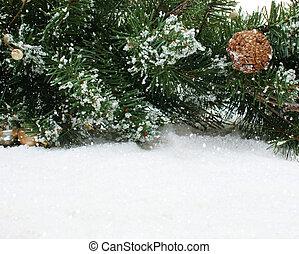 クリスマスツリー, ブランチ, 中に, 雪