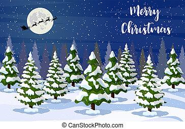 クリスマス, 風景, 夜