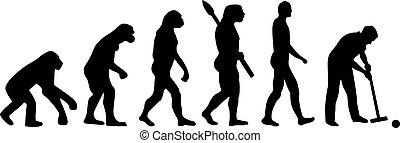 クローケ, 進化