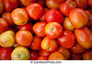 クローズアップ, の, 新しい トマト, 山