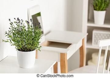 クローズアップ, の, a, ラベンダー, 中に, a, 白い花, ポット, 上に, a, 白, テーブル, ∥で∥, a, 化粧台, そして, 椅子, 中に, ∥, 背景
