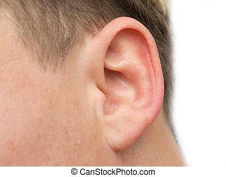 クローズアップ, 人間の耳