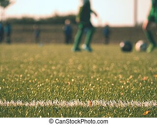 クローズアップ, 光景, 細部, ライン, border., 白, playfield, フットボール, playground.
