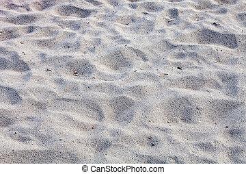 クローズアップ, 砂, の, 浜, 中に, ∥, 夏