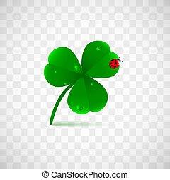 クローバー, 植物, ∥あるいは∥, てんとう虫, 春, オブジェクト, 露, leafed, 隔離された, バックグラウンド。, fhree, 緑, 聖者, 雨滴, 休日, patrick's, 透明, waterdrops