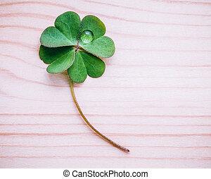 クローバー, 葉, 上に, ぼろぼろ, 木製である, バックグラウンド。, ∥, 象徴的, の, 4葉クローバー, ∥,...