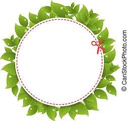 クーポン, 発表, 葉, 緑