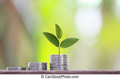 グラフ, ビジネス, 木, 栽培された, 円形浮彫り, 緑の投資, 上, profits., 概念, 形