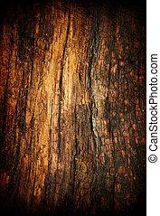 グランジ, 木, 古い, texture.