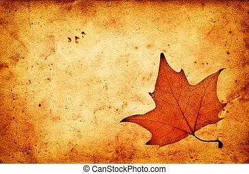 グランジ, 秋, ペーパー, 古い, かえで 葉