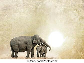グランジ, 背景, 象