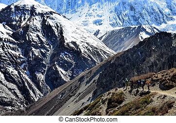グループ, の, 山, trekkers, backpacking, 中に, ヒマラヤ山脈, 山