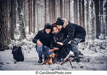 グループ, キャンプ, 雪が多い, staged, 森林, midst, 友人, 幸せ