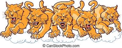 グループ, マスコット, 充満, 前方へ, 平均, 漫画, wildcat
