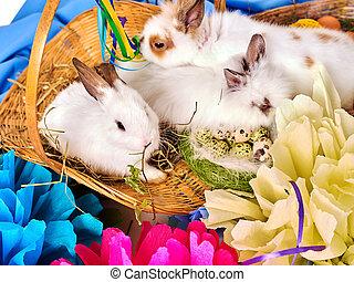 グループ, 春, flowers., うさぎ, egg., 休日, イースターうさぎ