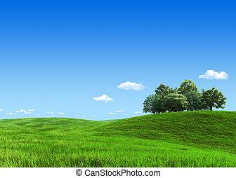 グループ, 牧草地, 自然, -, コレクション, 緑の木, テンプレート