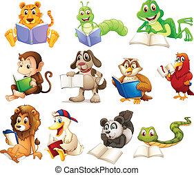 グループ, 読書, 動物