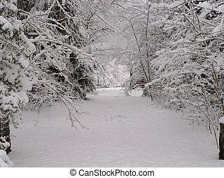 ケベック, 冬