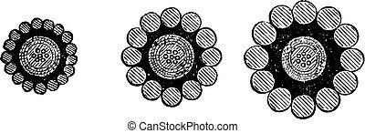 ケーブル, engraving., 型, 地中海