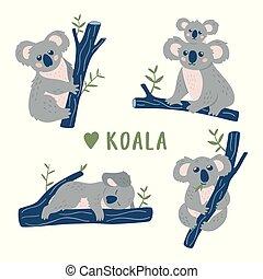 コアラ, 熊, collection., 手, いたずら書き, 引かれる