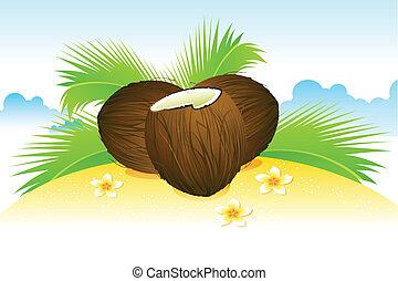 ココナッツ, 上に, 浜
