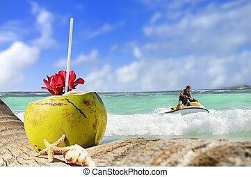 ココナッツ, 浜