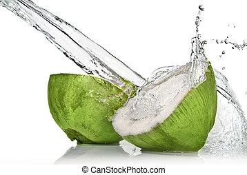 ココナッツ, 隔離された, 水, はね返し, 緑の白