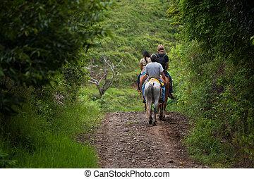 コスタリカ, 観光客, 馬の背