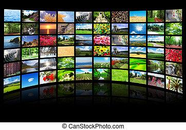 コラージュ, 写真, 多数, 自然
