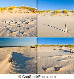 コラージュ, 日没, 浜,  -, 砂丘