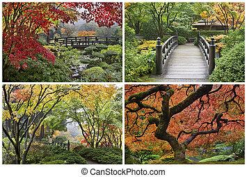 コラージュ, 秋, 庭の日本人