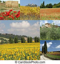 コラージュ, tuscan, 風景