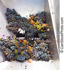 コルクせん抜き, 粉砕機, destemmer, winemaking, ブドウ