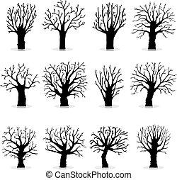 コレクション, の, 木, シルエット