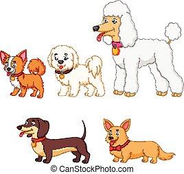 コレクション, 犬, セット, 別, 種類