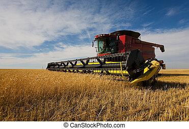 コンバイン, 収穫する