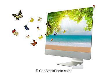 コンピュータ, ディスプレイ, ∥で∥, 蝶, 隔離された, 白, 背景