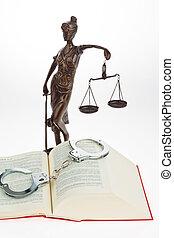 コード, の, 法律, ∥ために∥, ∥, court.